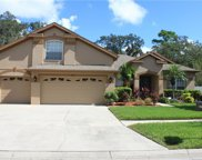 2036 Wexford Green Drive, Valrico image
