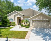 11806 Summer Springs Drive, Riverview image
