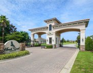 10916 Brooksnest Court, Lithia image