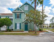 10412 White Lake Court Unit 10412, Tampa image