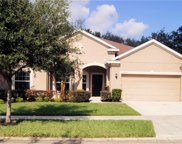 11325 Coventry Grove Circle, Lithia image
