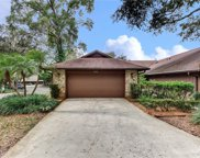 210 Shady Branch Trail, Deland image