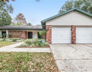 4134 Dellbrook Drive, Tampa image