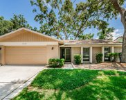 2341 Homestead Terrace N, Palm Harbor image