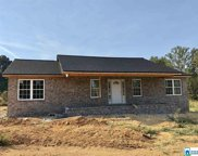 4516 Spunky Hollow Rd, Remlap image
