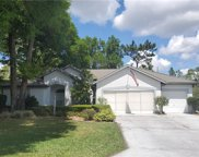 19415 Sw 100th Loop, Dunnellon image