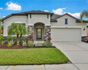 11304 Lazy Hickory Lane, Tampa image