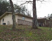 3704 Wilhite Rd, Sevierville image