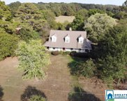 1109 Coleman Bridge Rd, Childersburg image
