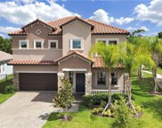 11876 Frost Aster Drive, Riverview image