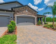19356 Hawk Valley Drive, Tampa image