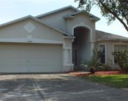 31042 Stone Arch Avenue, Wesley Chapel image