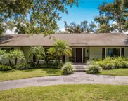 2312 Overlook Drive, Mount Dora image