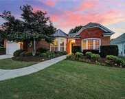 41244 Calla Lily  Street, Indian Land image