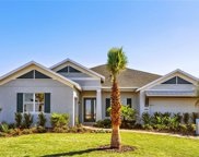 11715 Lake Lucaya Drive, Riverview image