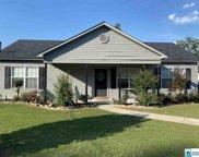 239 Davis Dr, Odenville image