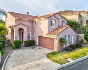 10462 Miracle Waters Court, Spring Valley image