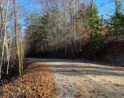 Ivy Way, Sevierville image