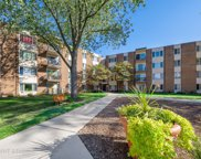 140 West Wood Street Unit 428, Palatine image