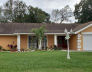 4451 Mohican Trail, Valrico image