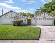 4141 Rolling Springs Drive, Tampa image