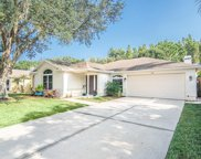 1216 Cord Grass Court, Wesley Chapel image