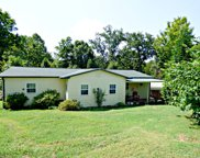 3075 Wilson Rd, Strawberry Plains image