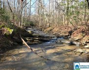 Sunset Dr Unit 72 acres, Pell City image