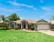 11731 Pineloch Loop, Clermont image