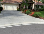 11872 Grand Isles Ln, Fort Myers image