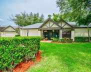 915 Hickory Hill Court, Palm Harbor image