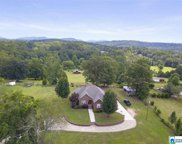 7273 Cavern Rd, Trussville image