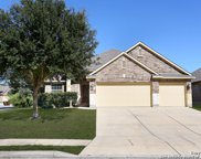 10639 Larch Grove Ct, Helotes image