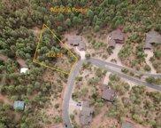 51 Forest Trail Court Unit #51, Pine image
