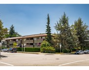 436 Seventh Street Unit 210, New Westminster image