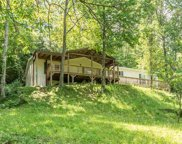 224 Cottontail Cove Way, Sevierville image
