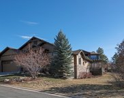 2646 Hawk Point Court, Castle Rock image