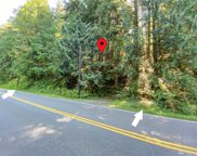 235 xx S Lake Roesiger Rd, Snohomish image