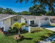106 Meadowcross Drive, Safety Harbor image