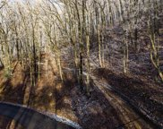 Lot 3 Dupont Springs, Sevierville image