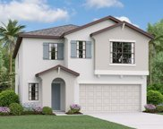 10203 Cool Waterlily Avenue, Riverview image