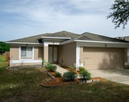 3016 Summer House Drive, Valrico image