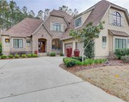313 Hampton Lake Drive, Bluffton image