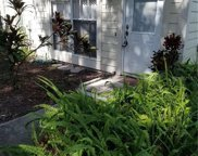 13923 Fletchers Mill Drive, Tampa image