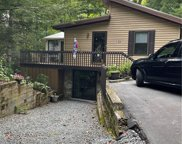 133 Sourwood Knoll, Linville image