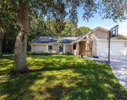 15902 Country Farm Place, Tampa image