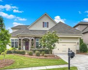 16817 Coves Edge  Lane, Charlotte image