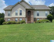 240 Cottage Court, Springville image