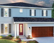 21644 Pearl Crescent Court, Land O Lakes image