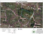 0000 Bear Track Drive, Tuckasegee image